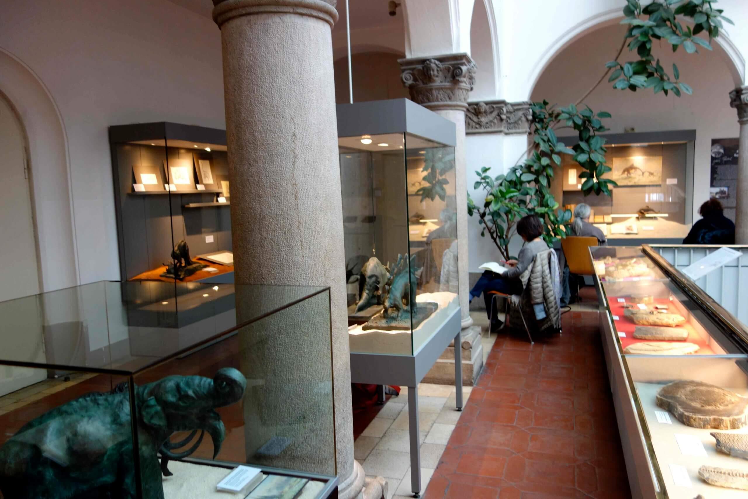 Silke Blomeyer - Palaeontologisches Museum München