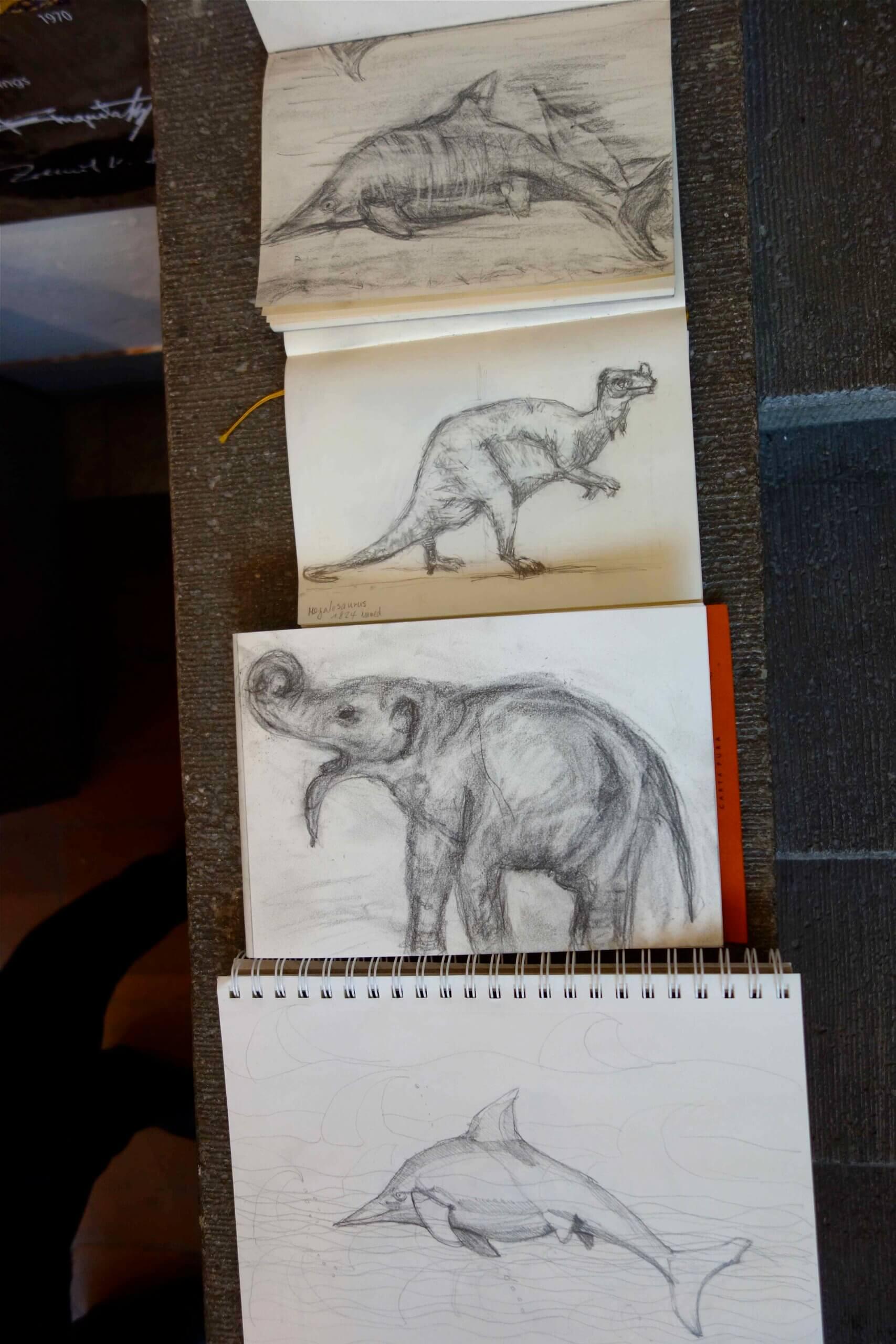 Zeichnen im Museum  Silke Blomeyer