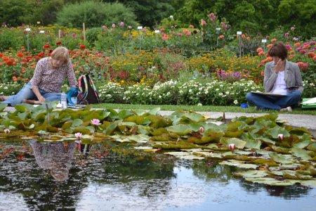 Botanischer Garten München - Malen mit Cornelia Eichacker